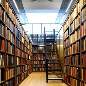 Библиотеки Борзы